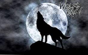 Wolfs Rain Wolf Wallpapers
