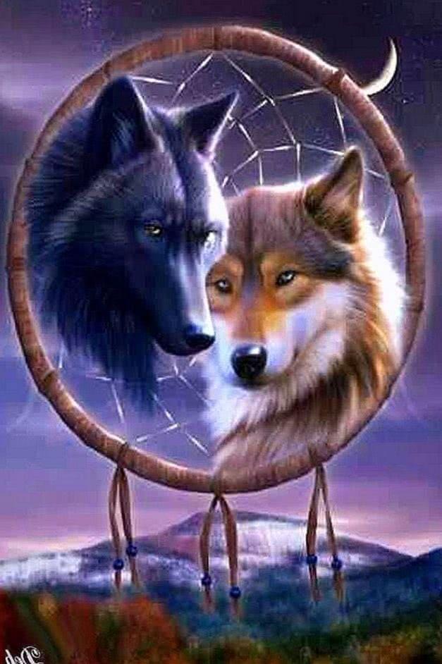 Wolf Dream Catcher Desktop Wallpapers
