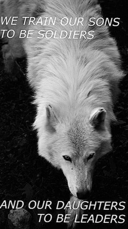 Wolf Pack Wallpaper Tumblr