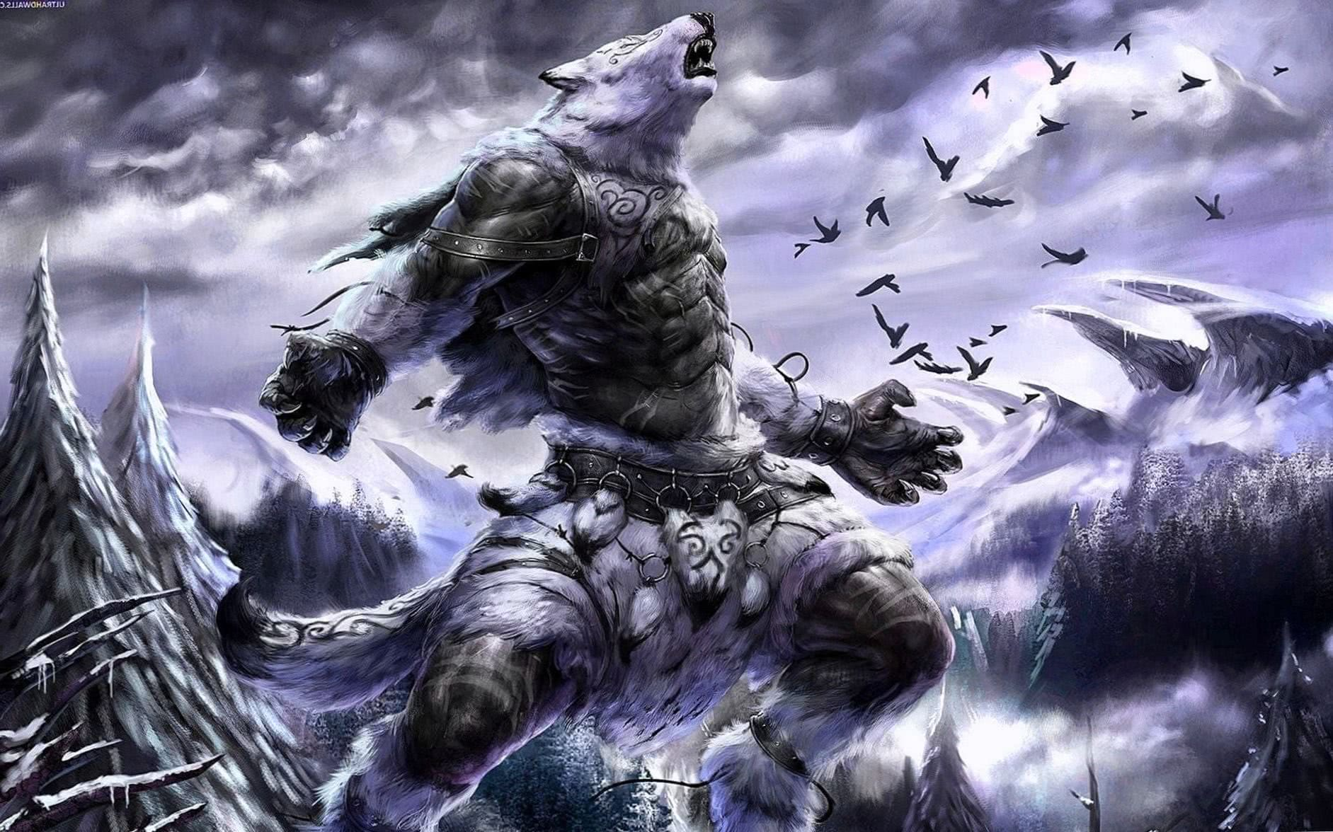 Warrior Wolf HD Wallpaper