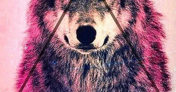 Wallpapers HTC Wolf
